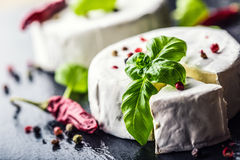 Brie cheese. Camembert cheese. Fresh Brie cheese and a slice on a granite board with basil leaves four colors peper and chili pepe Stock Photography