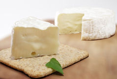 Brie cheese and cracker. A brie cheese and cracker with a piece of it Royalty Free Stock Photos