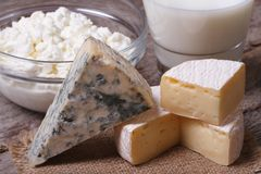 Brie cheese, Dor Blue, cottage cheese and milk close up Royalty Free Stock Images