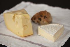 Brie francese e formaggio svizzero dell'emmental con le fette di salsiccia del salame e di panino al forno domestico disposto su  fotografia stock