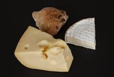 Brie francese e formaggio svizzero dell'emmental con le fette di salsiccia del salame e di panino al forno domestico su fondo ner immagine stock