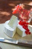 Brie met fruit stock foto