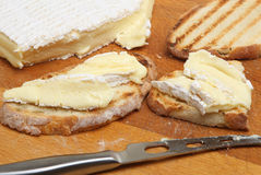 Brie on Toast. Ripe French brie cheese on rustic toasted bread Royalty Free Stock Photos
