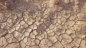 Bried earth with cracks Royalty Free Stock Photography