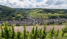 Briedel in de Moezel Duitsland Europa stock foto's