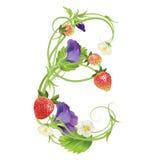 Brief een Aardbeidoopvont Rood Bes het van letters voorzien alfabet Vruchten ABC Royalty-vrije Stock Afbeelding