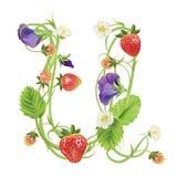 Brief een Aardbeidoopvont Rood Bes het van letters voorzien alfabet Vruchten ABC Stock Afbeelding