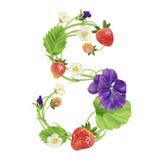 Brief een Aardbeidoopvont Rood Bes het van letters voorzien alfabet Vruchten ABC Stock Afbeeldingen