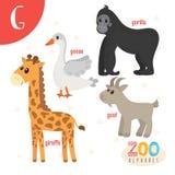 Brief G Leuke dieren Grappige beeldverhaaldieren in vector ABC-boe-geroep Stock Foto's