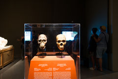 Brief History of Humankind exhibition in Israel Museum Stock Images