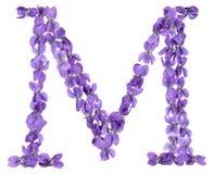 Brief M van alfabet, van bloemen van viooltje, op witte achtergrond worden geïsoleerd die royalty-vrije stock foto