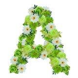 Brief A van groene en witte die bloemen op wit met wor worden geïsoleerd stock foto