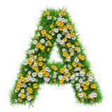Brief A van Groene Gras en Bloemen royalty-vrije illustratie