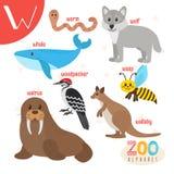Brief W Leuke dieren Grappige beeldverhaaldieren in vector Stock Fotografie