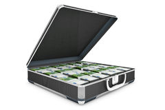 Briefcase with money Royalty Free Stock Photos