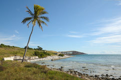 briege florida keys USA Arkivfoton