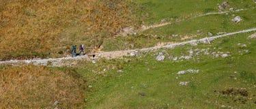 Brienz-Rothorn, Zwitserland - Wandelaars I stock foto