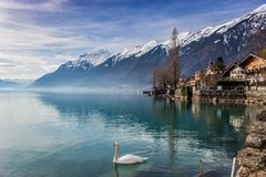 Brienz - View to the Alps royalty free stock photography