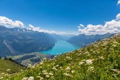 Brienzer湖和阿尔卑斯鸟瞰图  图库摄影