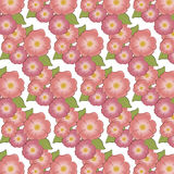 Brier Flower background. Pattern . Vector illustration Royalty Free Stock Image