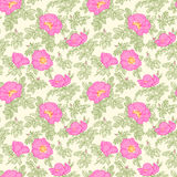 Brier Seamless Pattern. Vector Flowers, Brier Seamless Pattern Stock Image