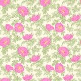Brier Seamless Pattern. Stock Image