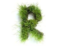 Brieven die van gras worden gemaakt royalty-vrije stock afbeelding