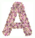 Brievenalfabet met conceptentype van bloemabc als embleem stock illustratie