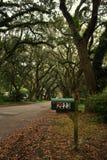 Brievenbus in Charleston& x27; s de herfstseizoen Stock Afbeeldingen