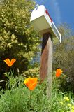 Brievenbus in de lente Stock Afbeelding