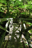Brige i Ravennaschluchten i den tyska svarta skogen Royaltyfria Foton