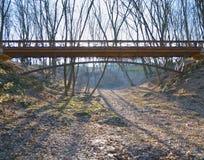 Brige i skogen Royaltyfria Bilder