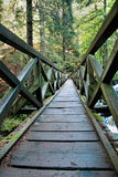 Brige in the Ravennaschlucht in the German Black Forest Royalty Free Stock Photography