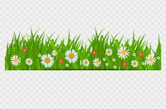 BrighGrass and flowers border, greeting card decoration element for Easter on a Transparent Background. Vector. Grass and flowers border, greeting card stock illustration