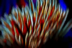 Bright. Abstract colorful background from toothpicks Stock Image