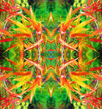 Bright abstract floral pattern for decoration Royalty Free Stock Photos