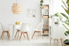 Free Bright And Spacious Dining Room Stock Photography - 108461232