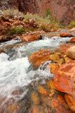 Bright Angel Creek Grand Canyon Stock Image