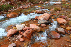 Bright Angel Creek Grand Canyon Stock Photography
