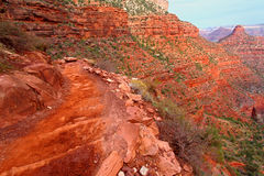 Bright Angel Trail Grand Canyon Royalty Free Stock Photo