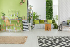 Bright apartment in green and white Royalty Free Stock Image