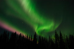 Bright Aurora Borealis over Fairbanks, Alaska Royalty Free Stock Photos