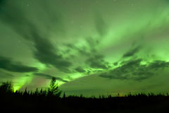 Bright Aurora over Alcan. Bright fall aurora over Alaska-Canada Highway, with clouds moving beneath Royalty Free Stock Image