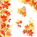 Bright autumn. Vertical seamless pattern, corner and design elements on autumn theme Stock Photography