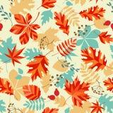 Bright autumn Stock Images