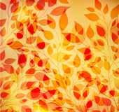 Bright autumn abstract background Stock Photos