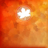 Bright autumn background. EPS 10 Royalty Free Stock Image