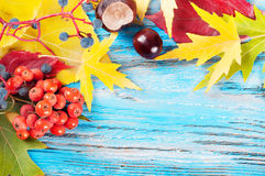 Bright autumn background Stock Photography