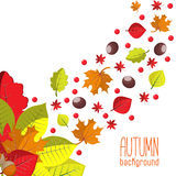 Bright autumn background for invitation or ad template with wreath from leaves, seeds and nuts. Royalty Free Stock Images