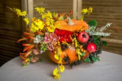 Bright autumn bouquet in a pumpkin on dark background royalty free stock images